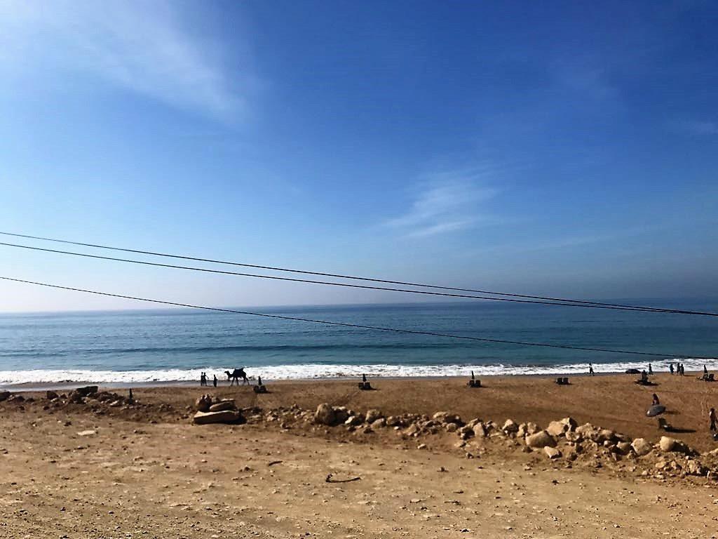 morocco camel beach
