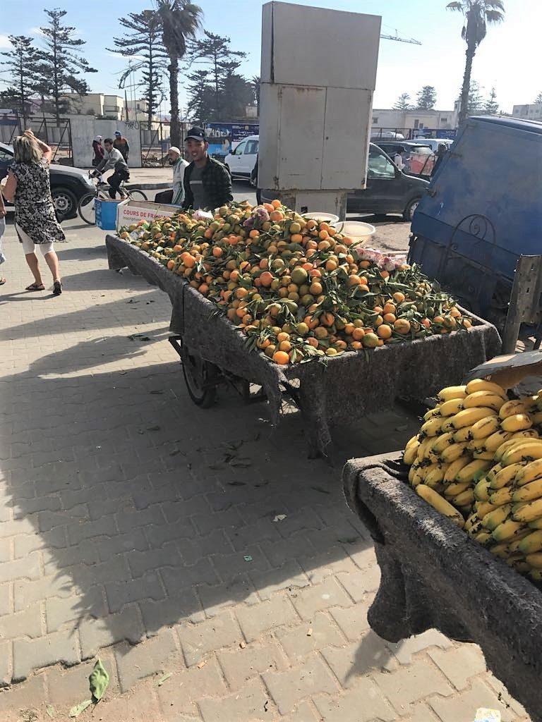 morocco oranges essaouira tangerine